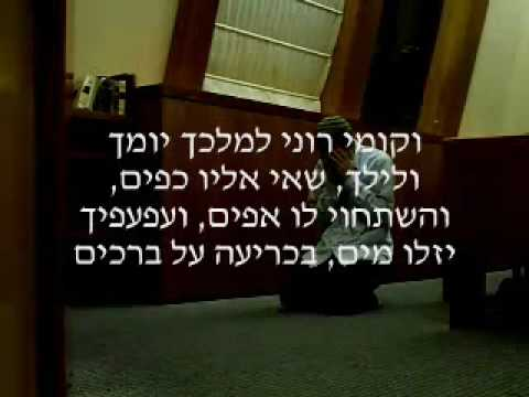תפילה יהודית - Jewish Prayer: THE SOURCES