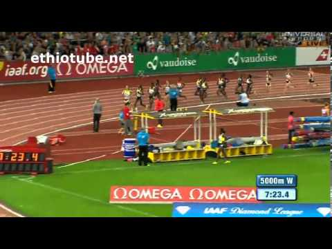 2013 Diamond League Zürich - Meseret Defar vs Tirunesh Dibaba in 5000m - 2013 Diamond League Zürich