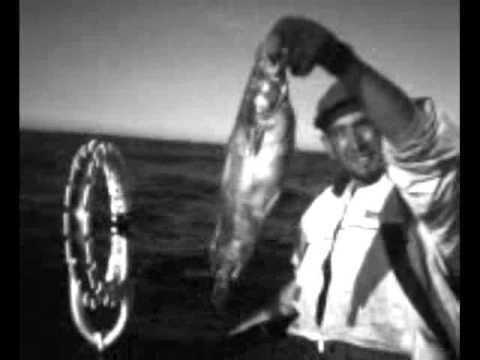 صياد الاسماك في البحر الابيض المتوسط في الجزائر, الله يكثر الخير و الهنا لي كل المسلمين
