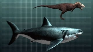 The Nightmarish Megalodon Sharkzilla- Shark Week 2012