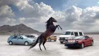 "Firestone ""Horses"""