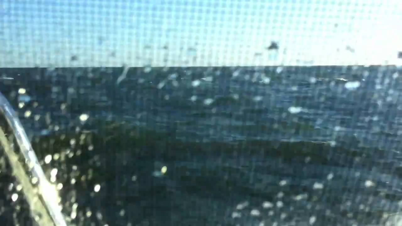 Buzzards bay 34 power catamaran rough seas youtube