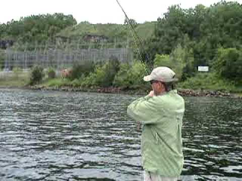 Fly fishing bull shoals dam white river arkansas youtube for White river arkansas fishing report
