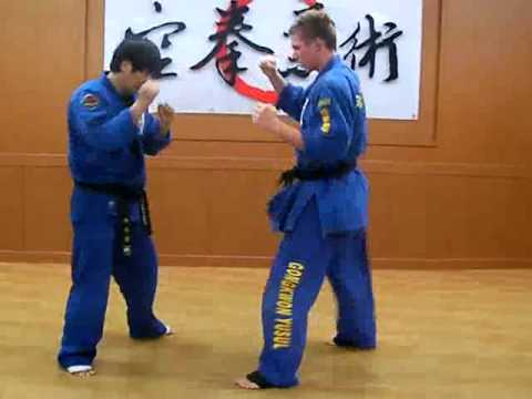 (73)Gongkwon Yusul combination blow mimic (Korea jiu jitsu Hapkido)