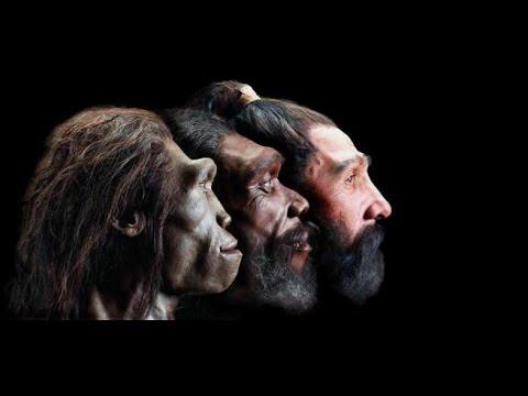 Nguồn gốc của loài người [Phần 1/3]