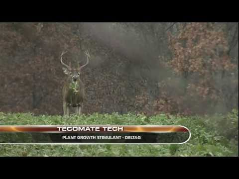 2011 Bucks of Tecomate Episode 5 - Extended Management Minute
