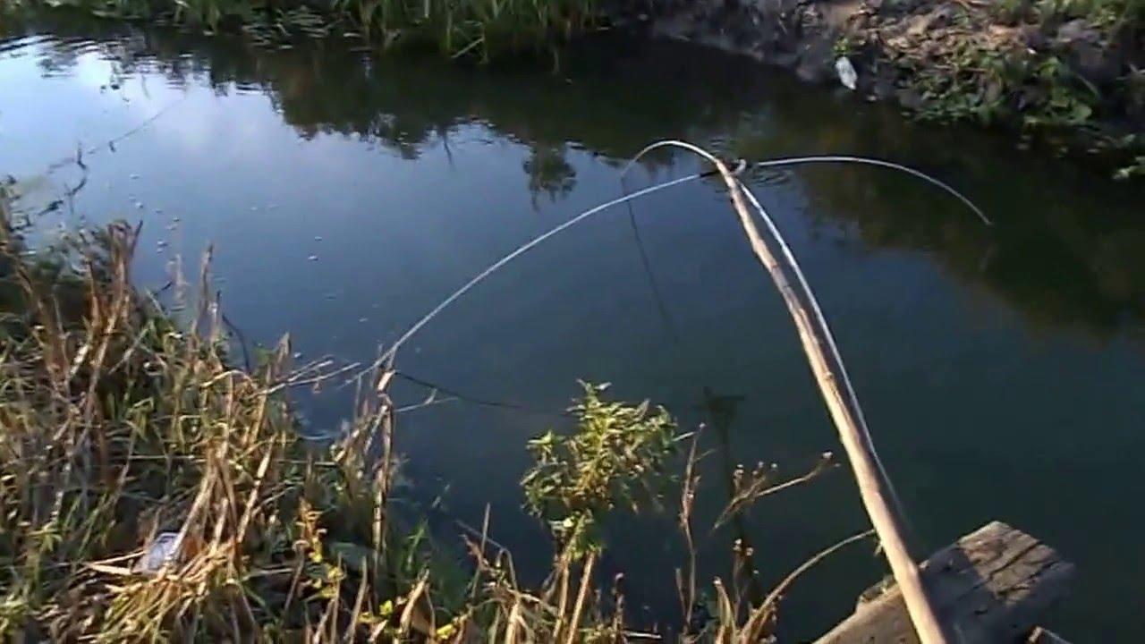 рыбалка карася на паук видео