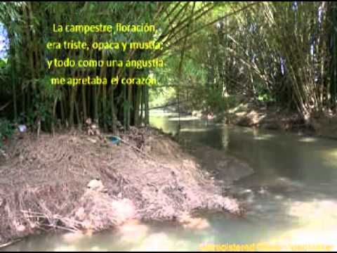 VALLE DE COLLORES Andres Jimenez.mpg