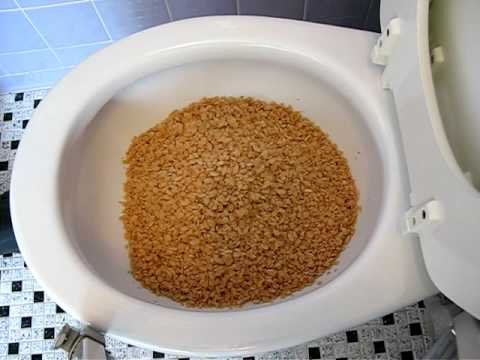 The Flushing of the Cereal