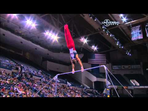 Jake Dalton - High Bar - 2010 Visa Championships - Men - Day 2