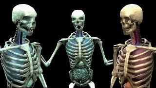 Mortal Kombat Komplete Mods Skeleton Fatalities On Skully The Skeleton