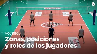 Zonas, posiciones y roles de los jugadores de voleibol
