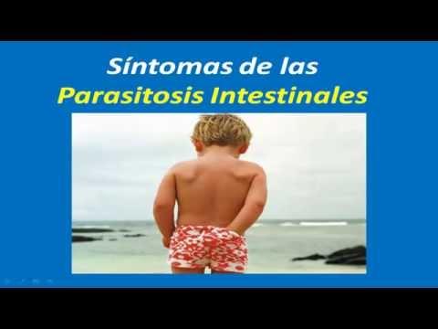 PARÁSITOS: Conoce los síntomas de los Parásitos intestinales
