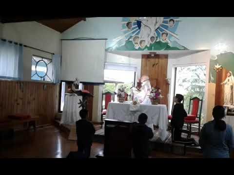 Santa Missa | 06.11.2020 | Sexta-feira | Padre José Sometti | ANSPAZ