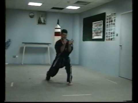 Okinawa-Te  Karate-do twelfth video