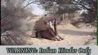 Indian Sex Hot Hot Mujra Desi Indian Girl!