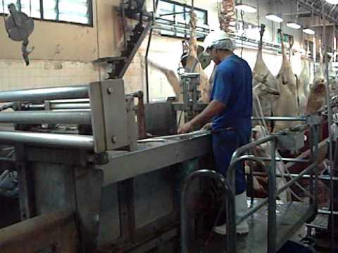 automação pneumatica de box de abate de bovinos por botoeira-part 02