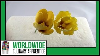 How To Make Sugar Paste Tulips-Sugar Paste Flowers