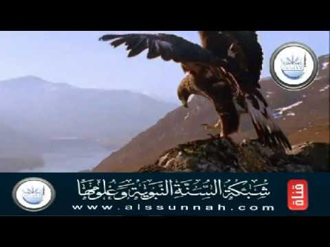 Read Sahih Bukhari Book pilgrimage 5/6
