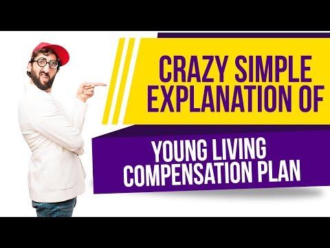 Simple Plan - Crazy Lyrics