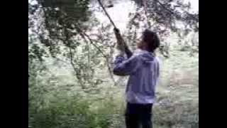 Caza Con Rifle Legend 5.5