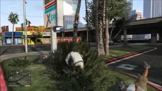 GTA 5 Cheats- Spawn BMX (XBOX 360 & PS3)