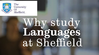 Studying languages at the University of Sheffield