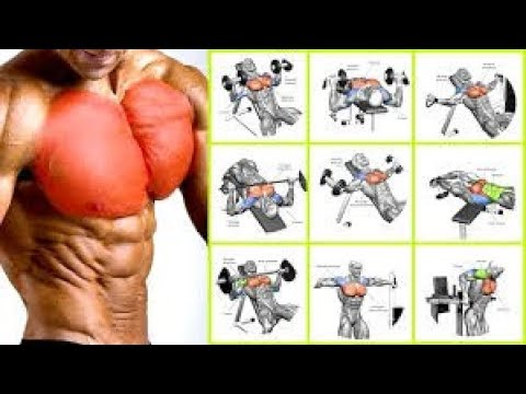 5 Best chest exercices / MUSCULATION PECS