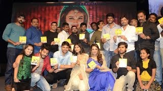 Nanna Nenu Naa Boyfriends Movie Audio Launch