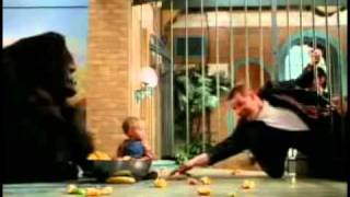Baby's Day Out Trailer