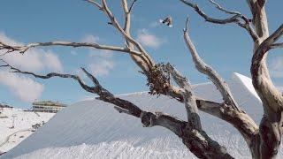 Video: Bangerz Down Under by ShredBots