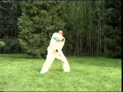Shaolin Wu Xing Quan (Five Animals Boxing)