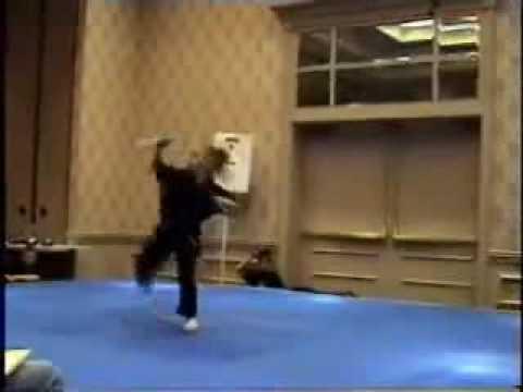 La fille de Bruce Lee ,