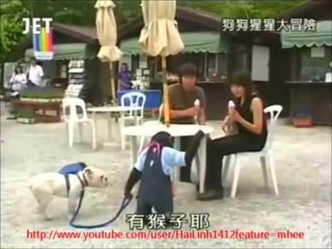 Hành trình chú khỉ thông minh và bạn chó : Tập 3 - Mua pho mai (phần 1)