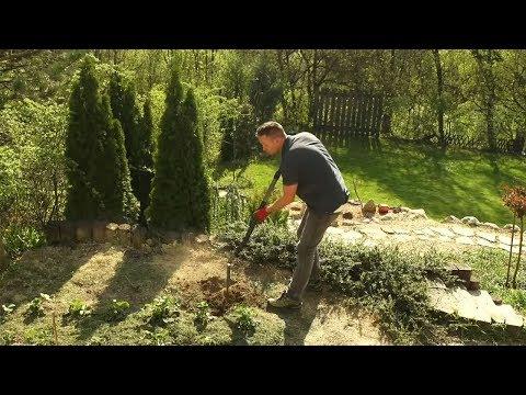 Hogyan javítsd a kert talaját?