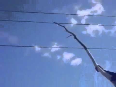 Man Hits Power Lines With Stick