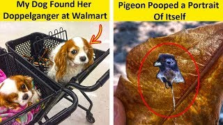 Incredible Coincidences You'll Have To See To Believe