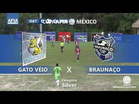 Copa AFIA México 2017 - GATO VEIO X BRAUNAÇO - SILVER - 12/11/2017
