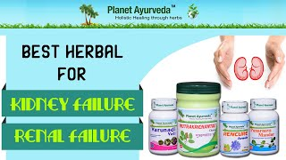 [Herbal Remedies for Kidney Failure ( Renal failure ) Treatment]