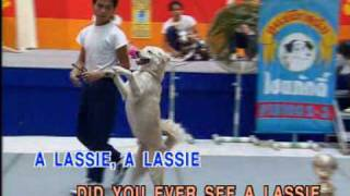 Children Song.Did You Ever See A Lassie