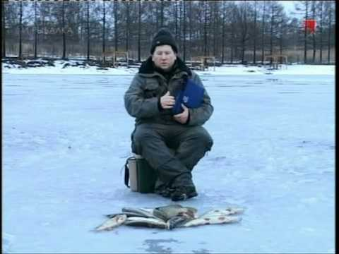 Ловля щуки зимними жерлицами