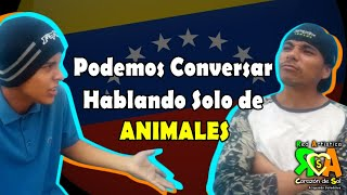 Conversación con nombres de animales