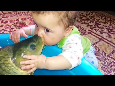BEST FUNNY BABIES MEET FISH FOR THE FIRST TIME | Funny Babies And Animals Videos Compilation