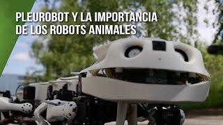 Pleurobot y la importancia de los robots animales