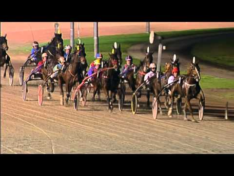 Vidéo de la course PMU PRIX TIMOKO (TROTTEUR FRANCAIS SILVER CHALLENGE)