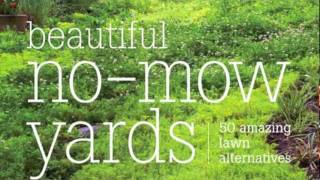 Beautiful No Mow Yards: 50 Amazing Lawn Alternatives   YouTube