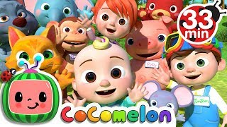 My Name Song   +More Nursery Rhymes & Kids Songs - Cocomelon (ABCkidTV)
