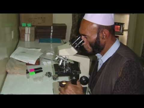 Malaria rapid diagnostic tests to improve treatment in Afghanistan