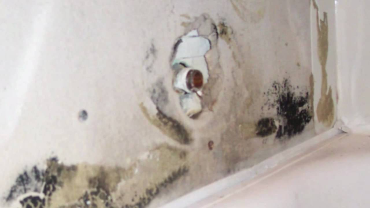 Black mold behind plastic bathtub surround bathroom demolition and remodeling youtube - How to remove black mold in shower ...
