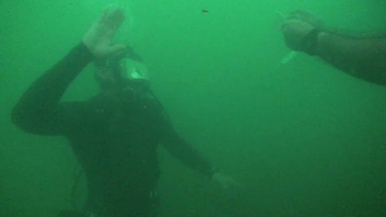 Pearl Harbor-NAVY Divers at the Arizona Memorial - YouTube